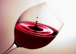 Hepatologie - Alkohol
